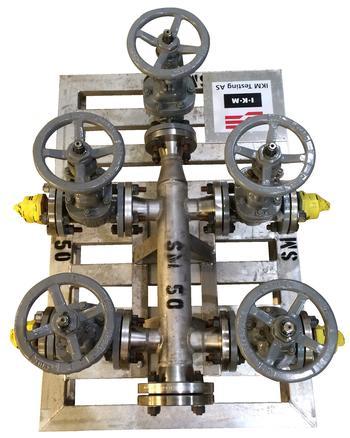 Manifolds Steam